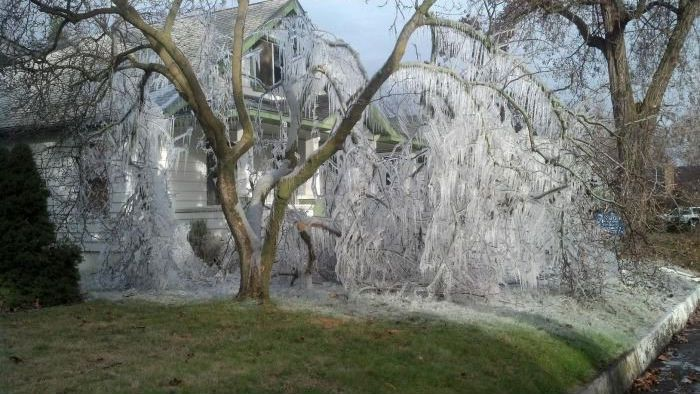 What Happens if You Use Lawn Sprinkler in Winter3