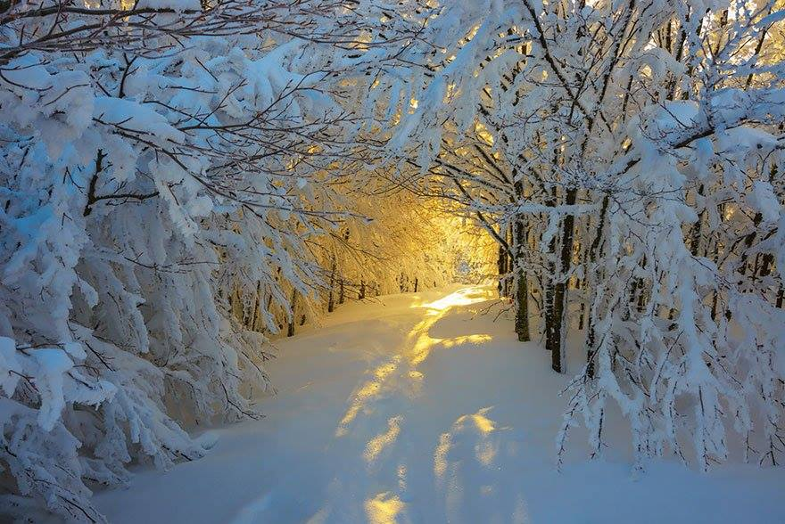 Wonderful Paths In The World4