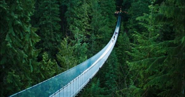 Capilano(Canada) Suspension Bridge