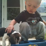Boy Teaches His Puppy How to Eat