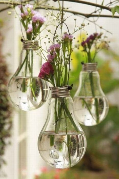 planter_bulbs5
