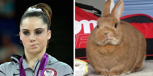 similarities6