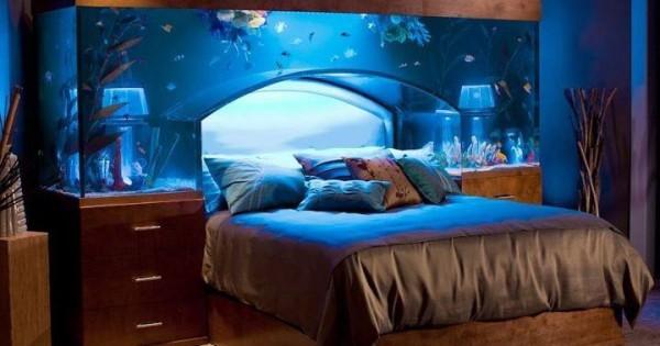 Home Aquarium Designs