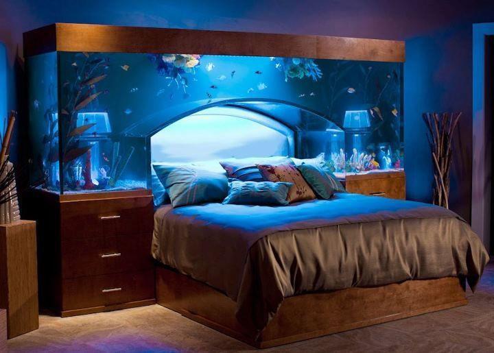 Home Aquarium Designs2