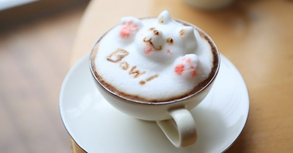 Amazing 3D Latte Art