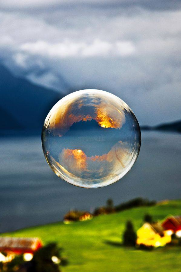 The World in a Bubble4