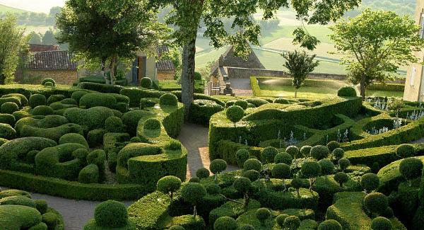 Amazing Gardens Knody