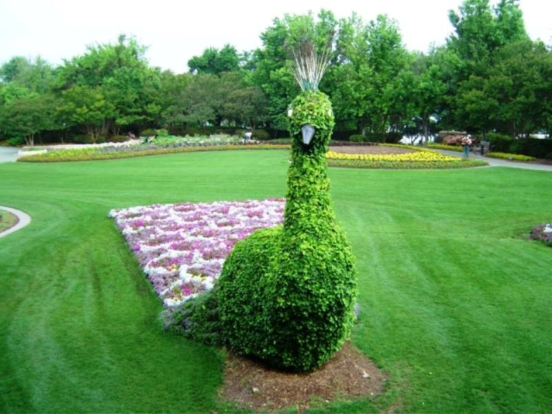 amazing gardens3