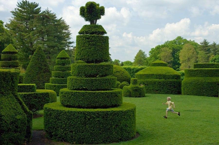 amazing gardens4