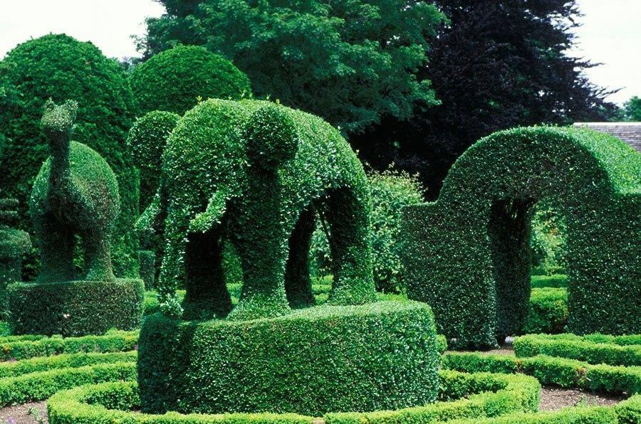 amazing gardens6