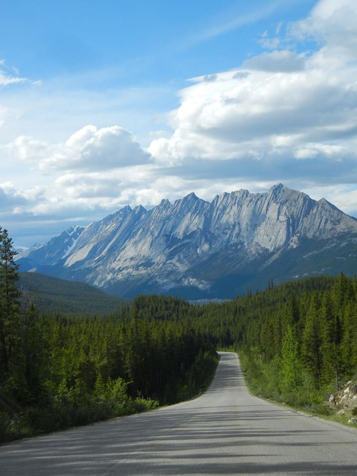 amazing roads7