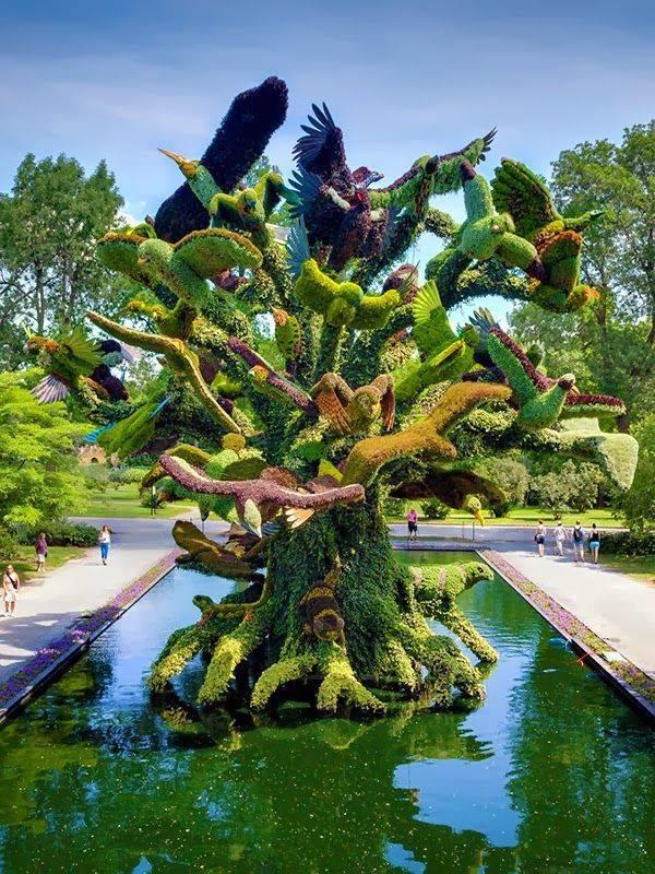 botanical garden, montreal canada5