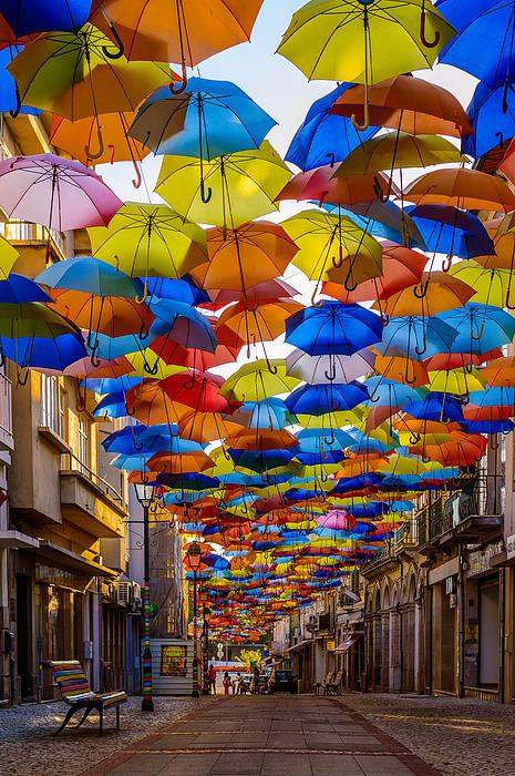 umbrella street6