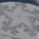 Amazing Snowshoe Art