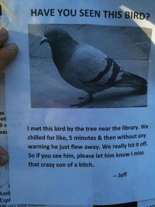 Funny Street Posters2