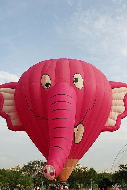 Hot Air Balloons2