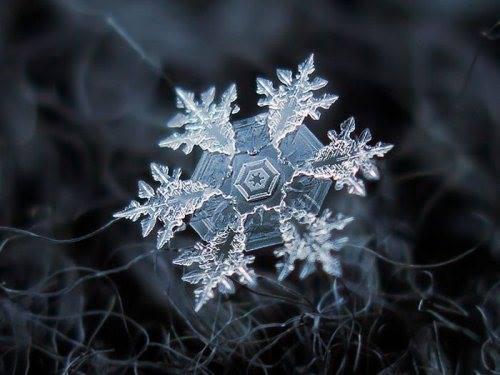 close-up shots of snowflakes