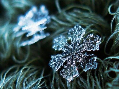 close-up shots of snowflakes2