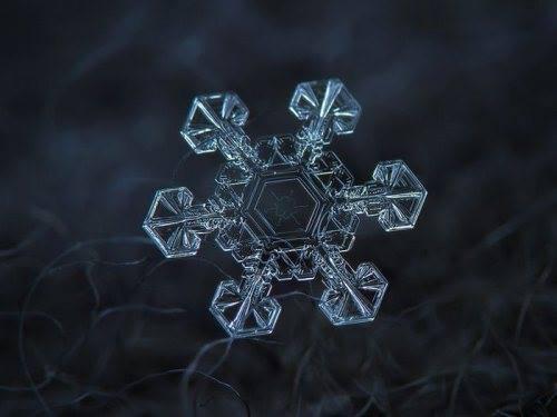 close-up shots of snowflakes3