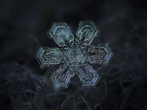 close-up shots of snowflakes4