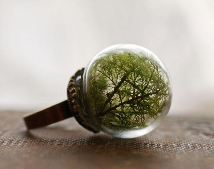 globe terrarium ring6