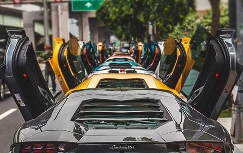Lamborghini Lineup, Great Shot