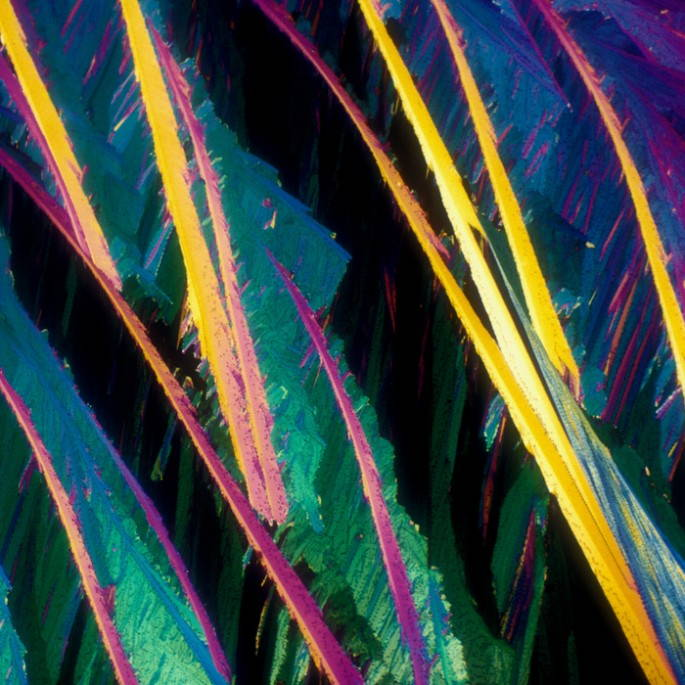 alcoholic drinks under a microscope Red wine