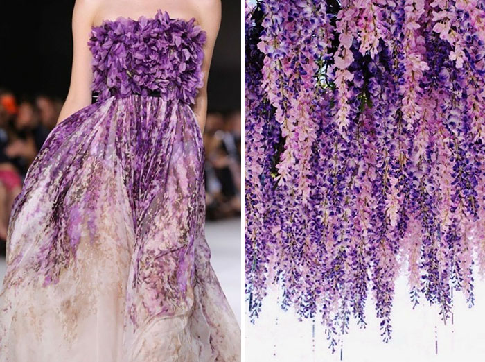 Fashion And Nature5