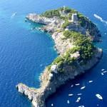 Dolphin Shaped Island, Italy