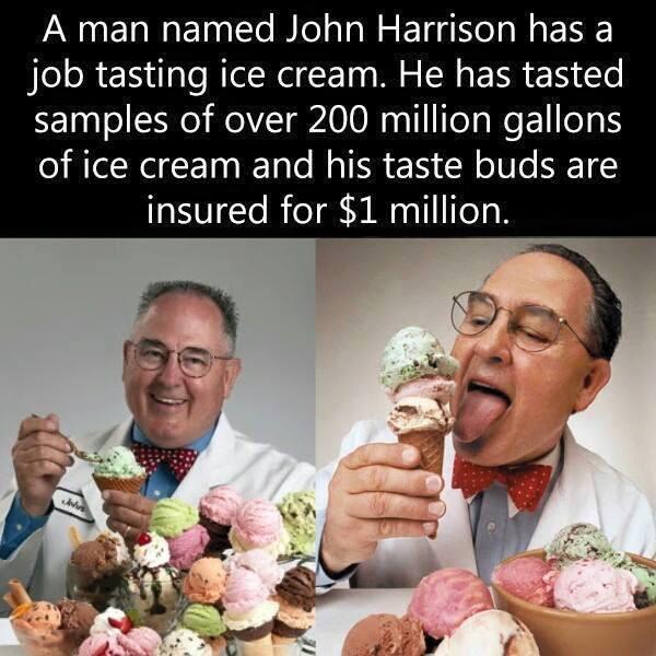 tasting ice cream job