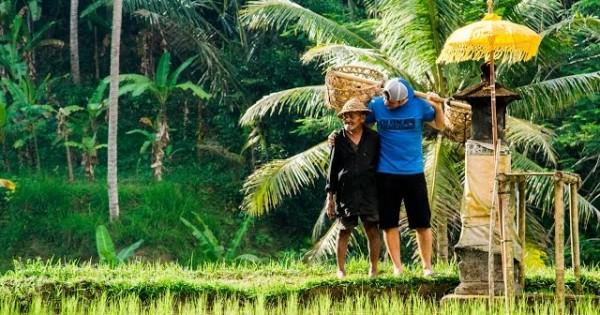 Bali Road Trip #onedayoffline