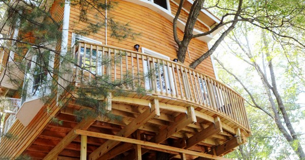 Grandfather Builds Epic 3-Story, Treehouse For His Grandkids