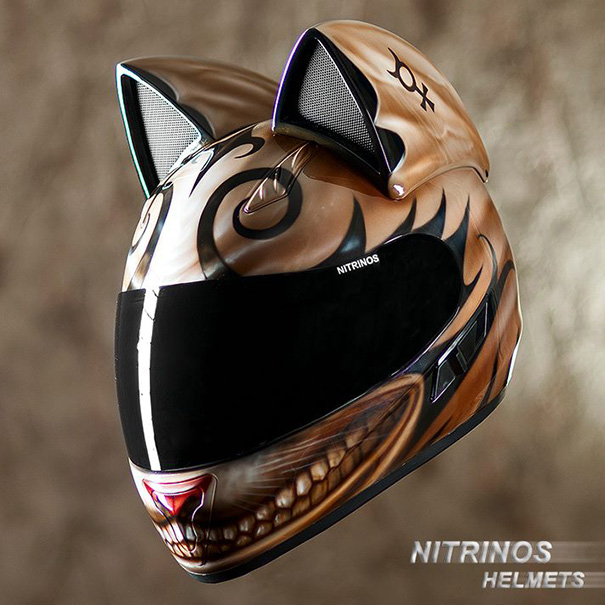 Cat Helmets With Ears From Russia 3