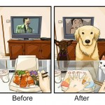 Life Before And After Getting A Dog