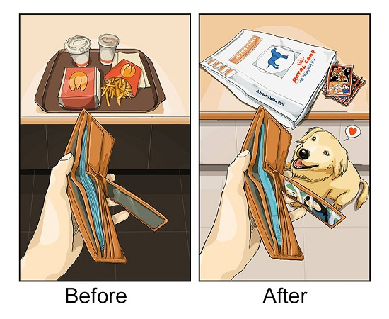 Life Before And After Getting A Dog 5